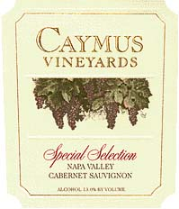 Caymus sp