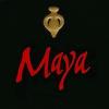 Dalla Valle maya