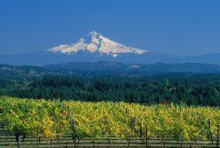 オレゴン&ワシントン
